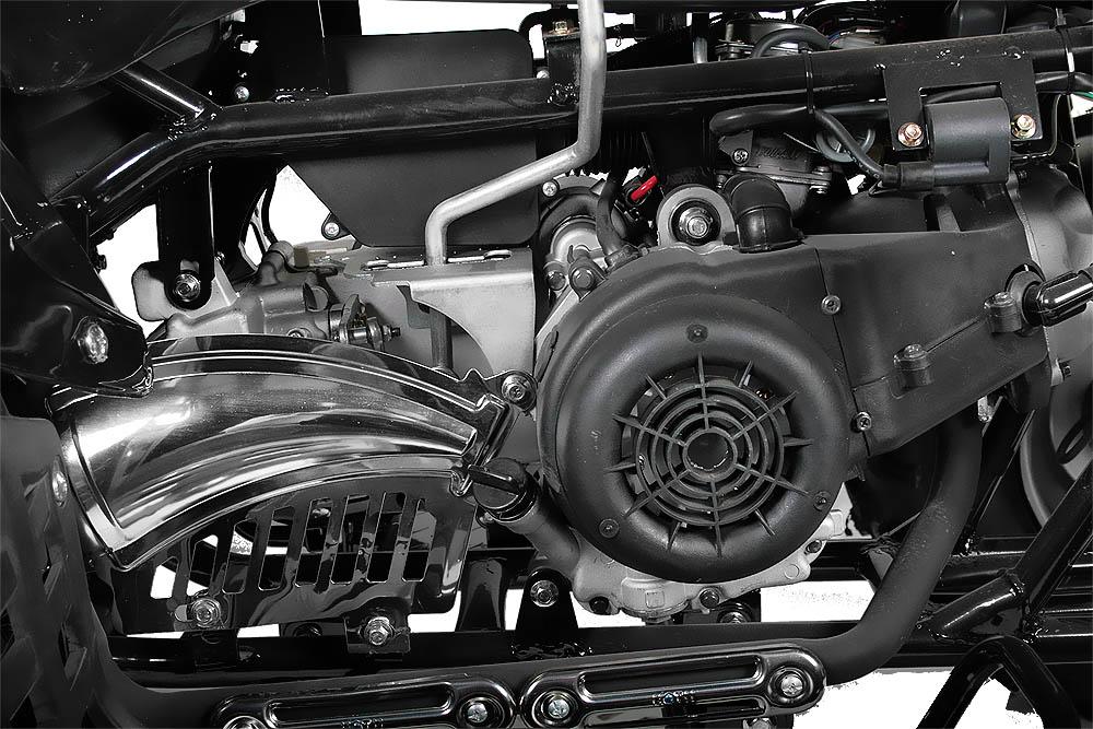 Quad Atv 150cc Akp Carbon Automatik Cvt R Ckw Rtsgang