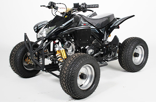 125cc quad grizzly motocross kindermotorrad pit dirt bike quad ersatzteile tuningteile china bikes. Black Bedroom Furniture Sets. Home Design Ideas