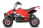 49cc Dragon Sport Edition Miniquad Atv