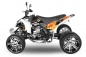 EGL MadMax 250cc Quad Racing Edition
