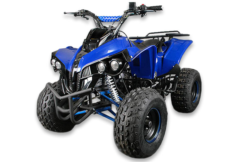 125cc Xxl Quad Warrior Kinderquad Poket Quad Bike Mini Atv