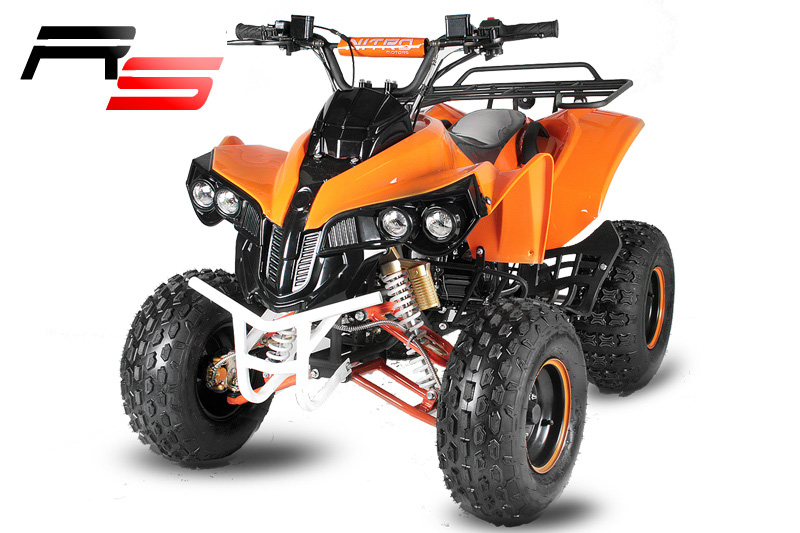 quad warrior rs 125cc 8 zoll semi 3g motocross. Black Bedroom Furniture Sets. Home Design Ideas
